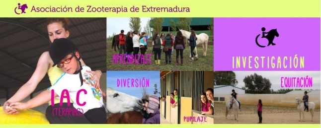María Dolores Apolo Arenas, Presidenta de la Asociación de Zooterapia de Extremadura.